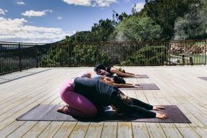 Vow Renewal Wellness Ceremonies in Sedona 1
