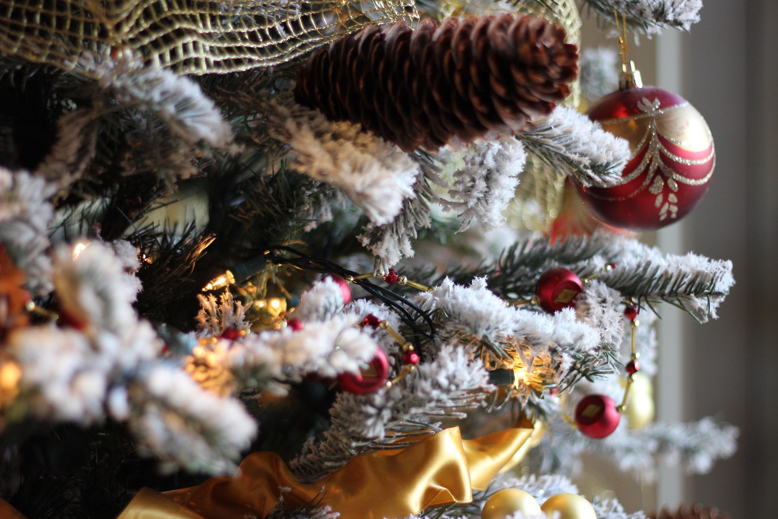 Christmas at Cress on Oak Creek 2